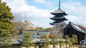 日本への一時帰国