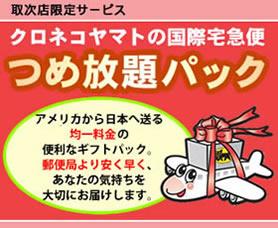 つめ放題パック:アメリカから日本へ送る均一料金の便利なギフトパック。郵便局より安く早く、あなたの気持ちを大切にお届けします。