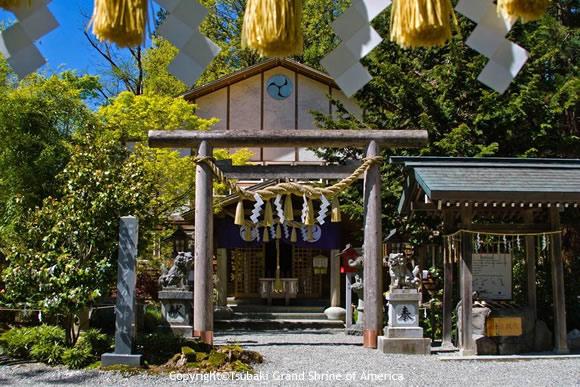 アメリカ椿大神社