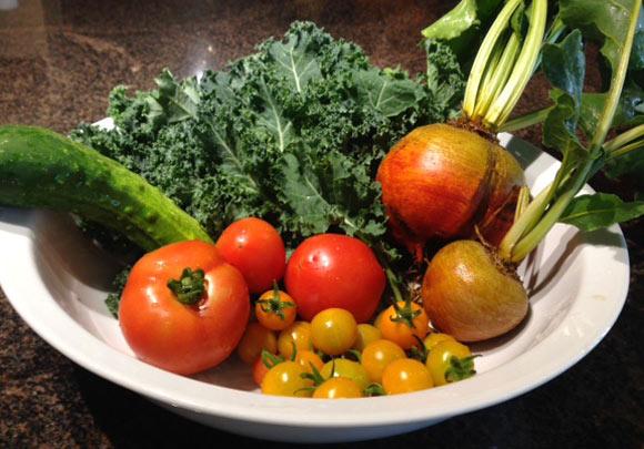 食卓を飾る家庭菜園の夏野菜たち